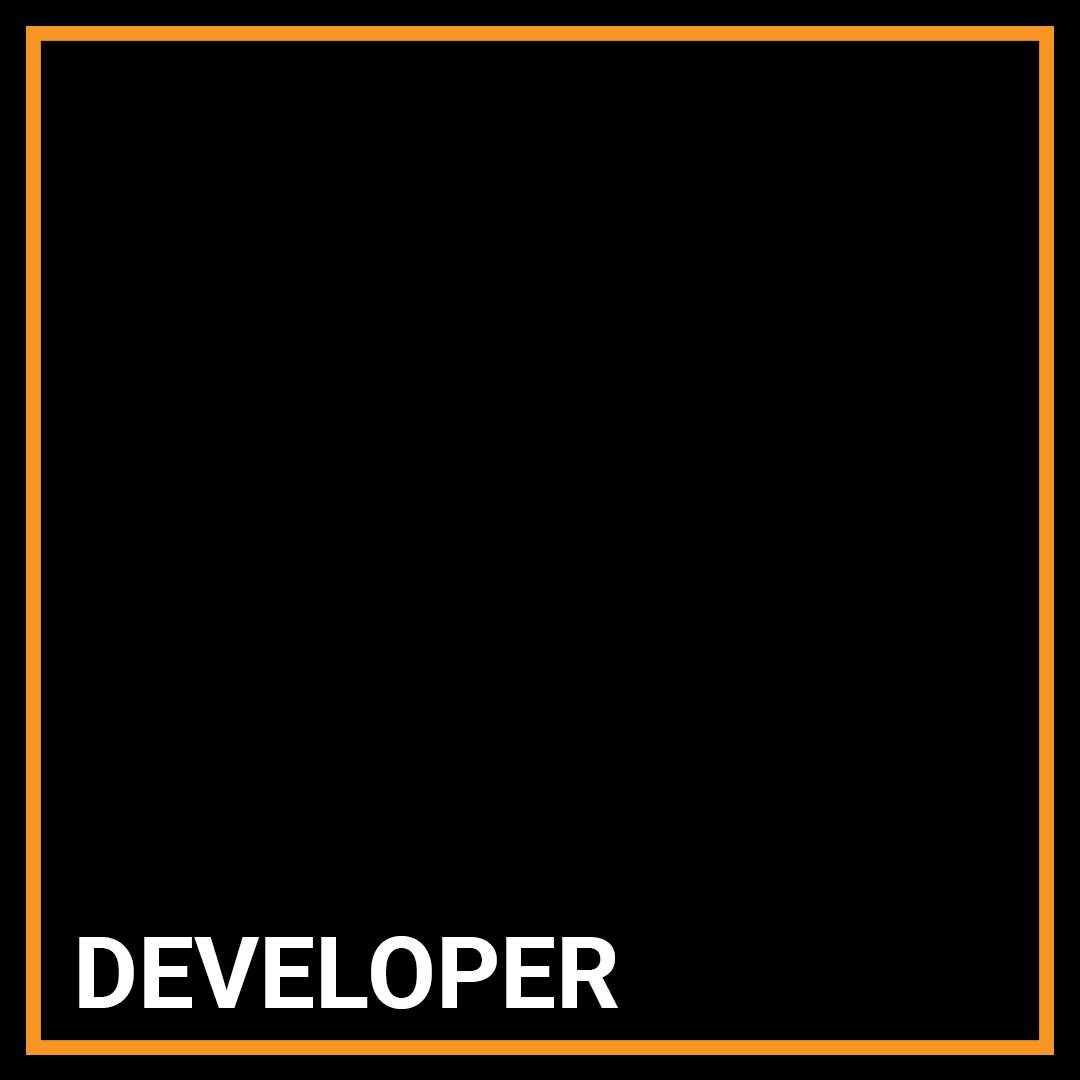 IT Developer - New York, New York