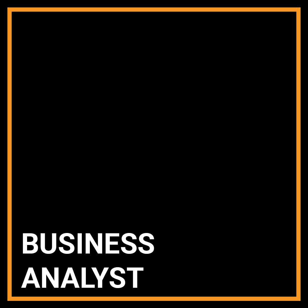 Business Analyst - New York, New York
