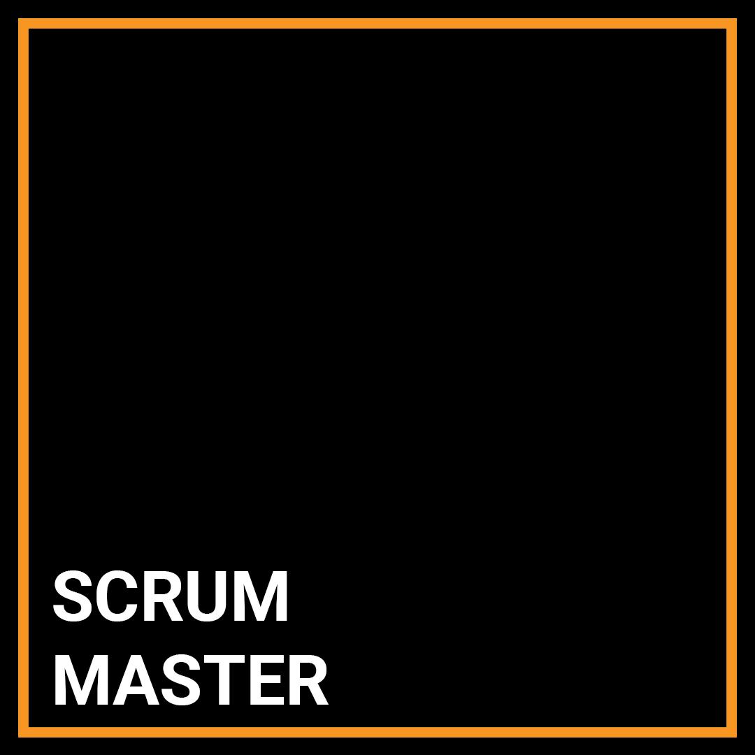 Scrum Master - New York, New York