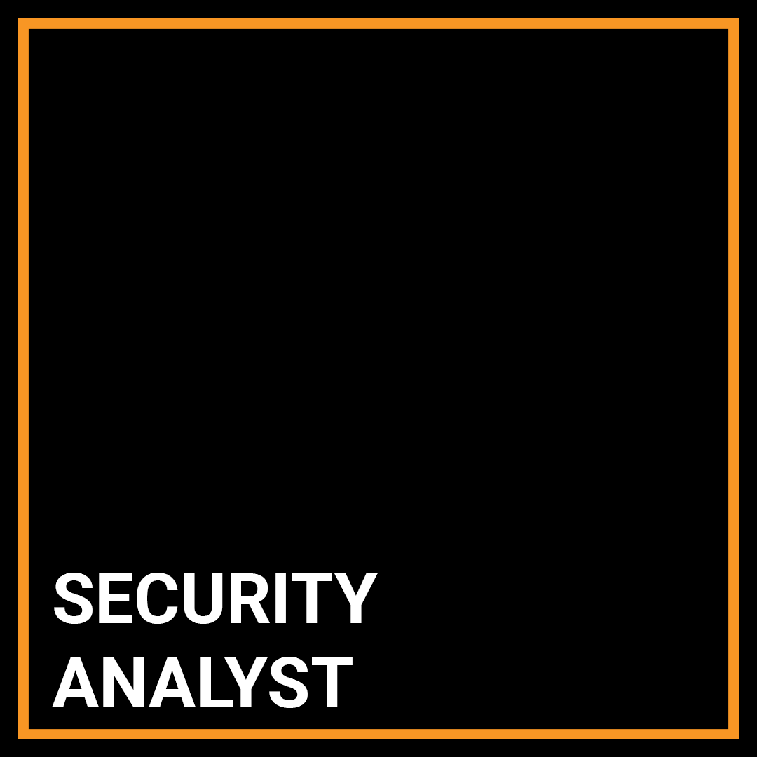 Security Analyst - Commercial Vulnerabilities - New York, New York