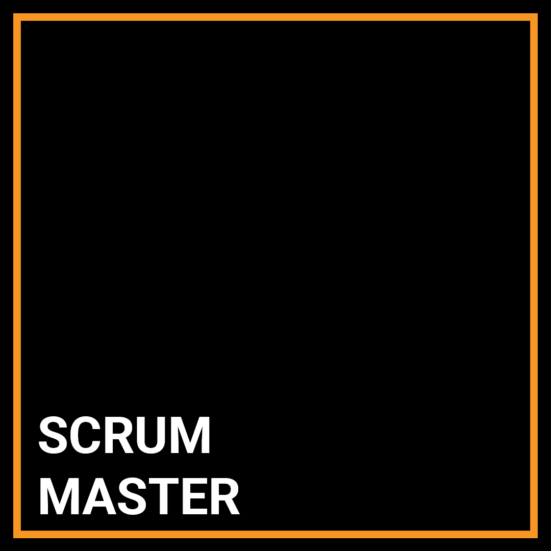 Scrum Master Project manager - New York, New York