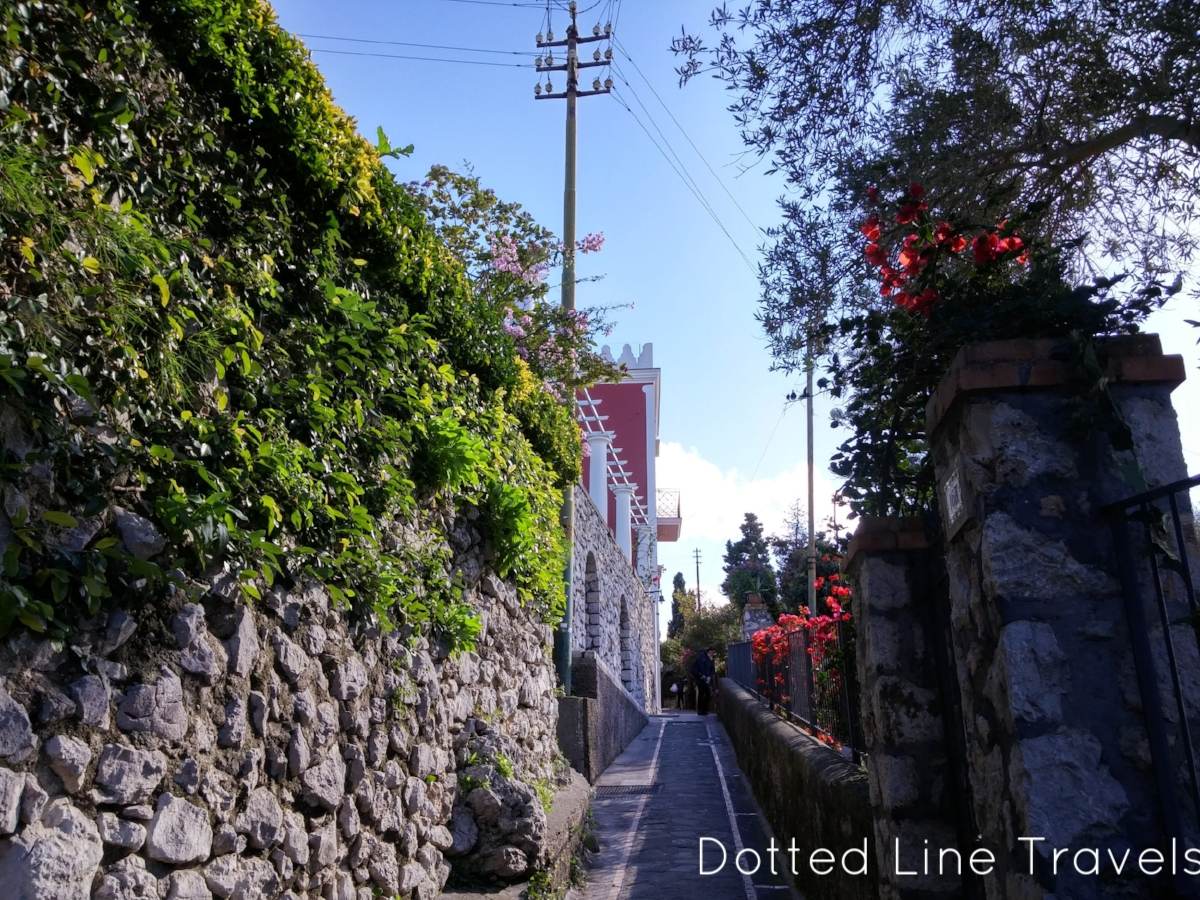 Just a photo taken at a random street in Capri, but it's so pretty!