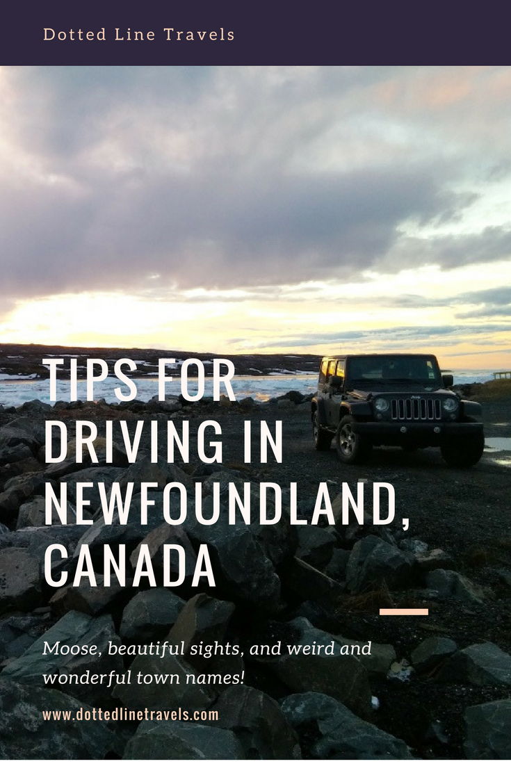 tips for driving in newfoundland, canada.png