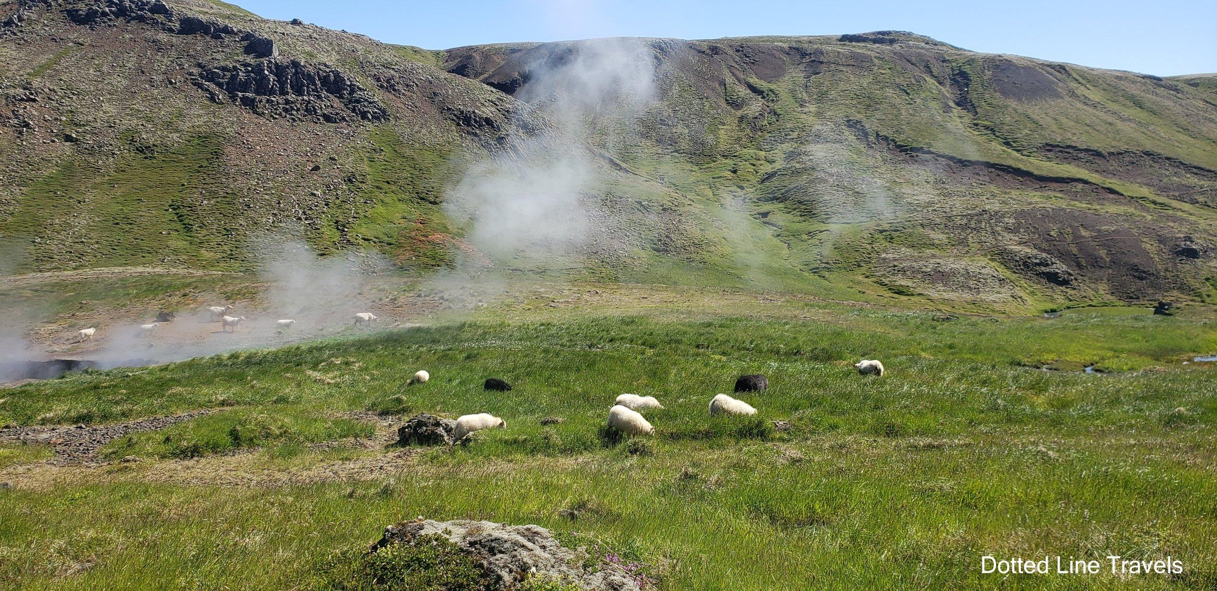 Reykjadalur Iceland