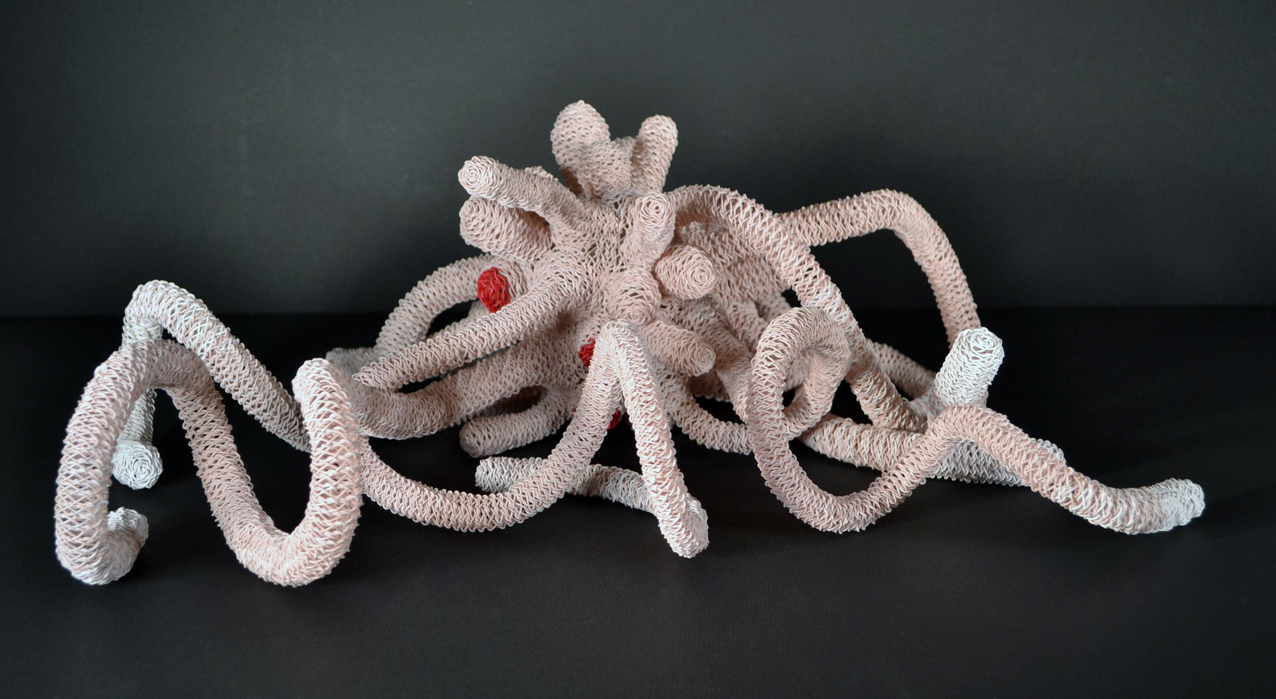 Thing 5: Albino   Twyla Exner