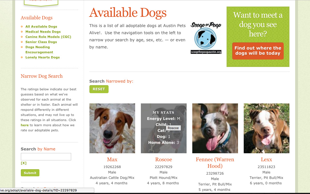 Austin Pets Alive available dogs