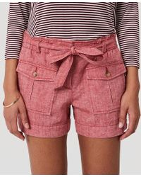 safari shorts.jpg