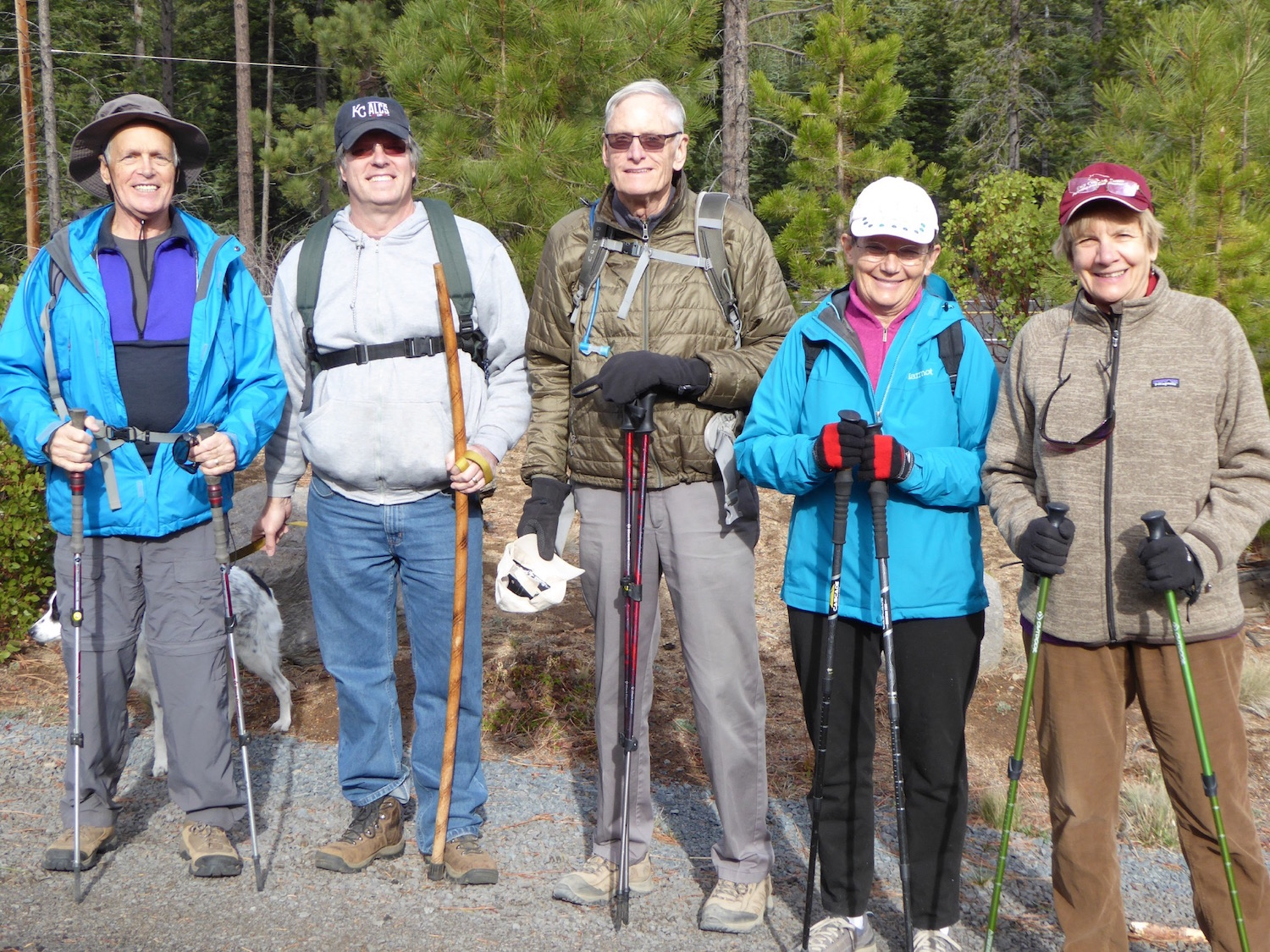 hiking-5withpoles.jpg