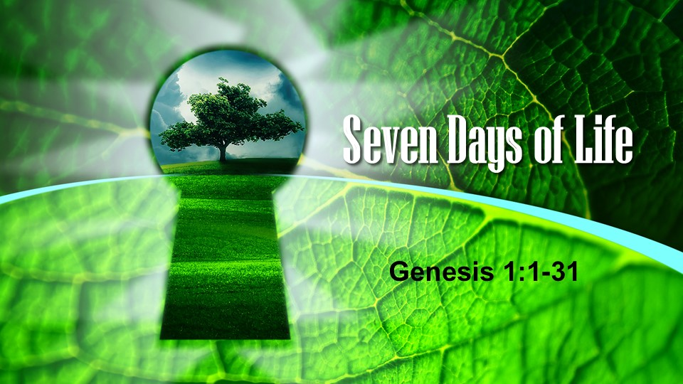 The seven days of creation in Genesis chapter 1 serve as a fractal of the goodness of life.