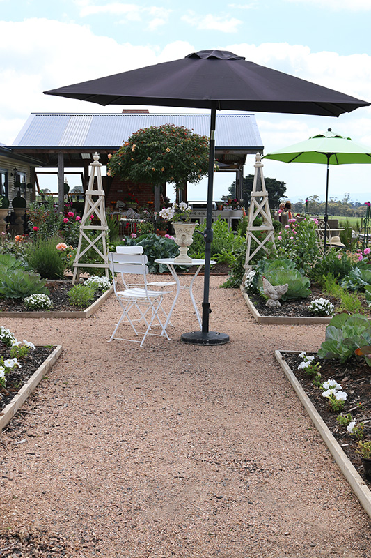 It's a dream to have the space to spread out and create a large kitchen garden