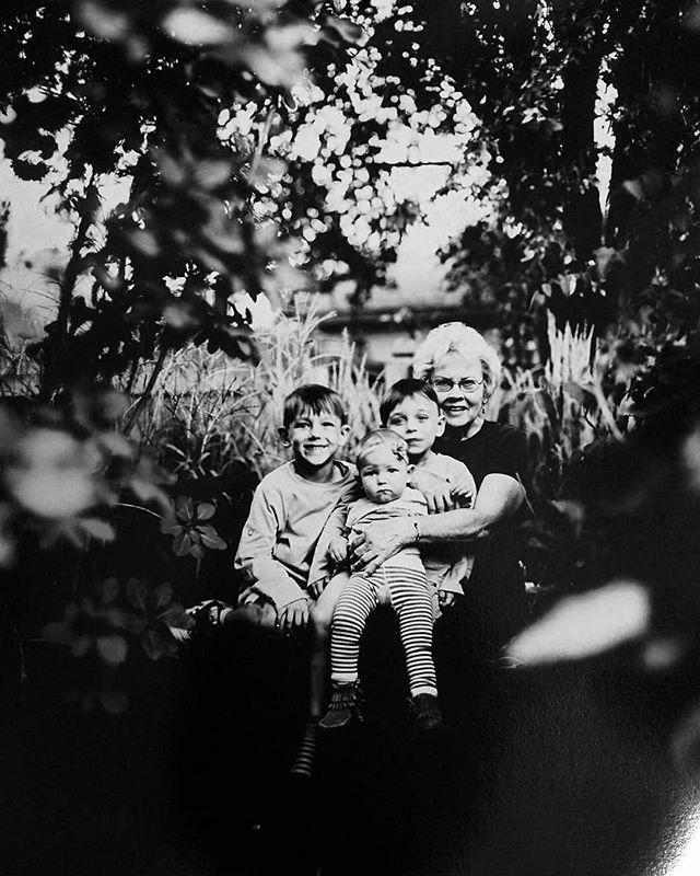 Thicket.  8x10  #orthochromatic #largeformat #largeformatphotography #ilfordphoto #directpositive #blackandwhite #summersessions #iso2 #portraitphotography #portrait #family #trees #backyard