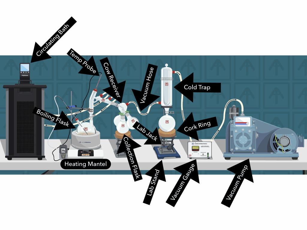 EA SPD Diagram.001.png