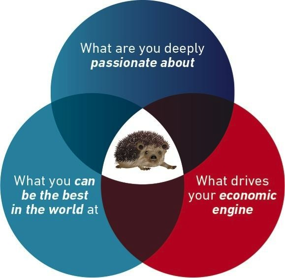 hedgehog concept.jpg