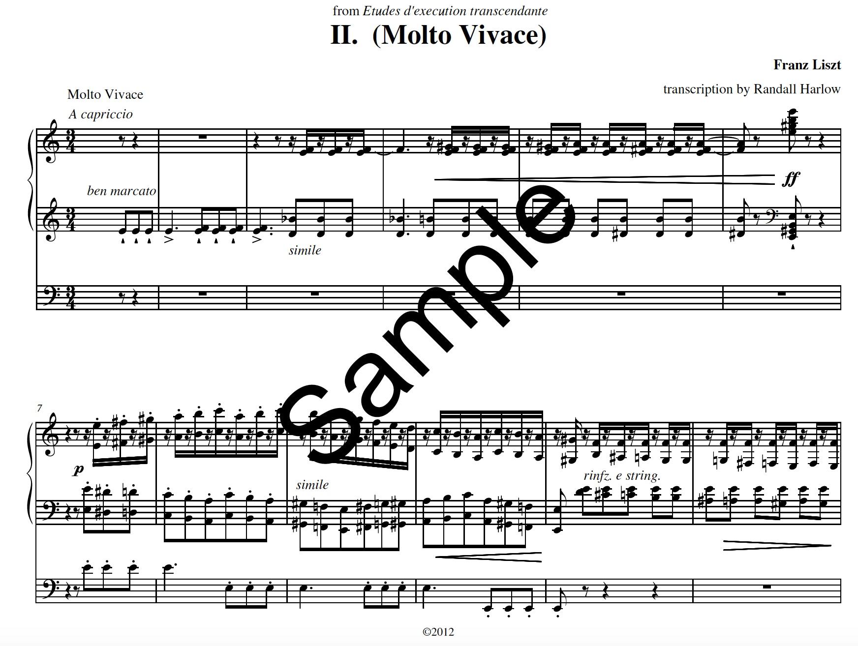 Liszt Transcendental Etudes Molto Vivace  transcribed for organ