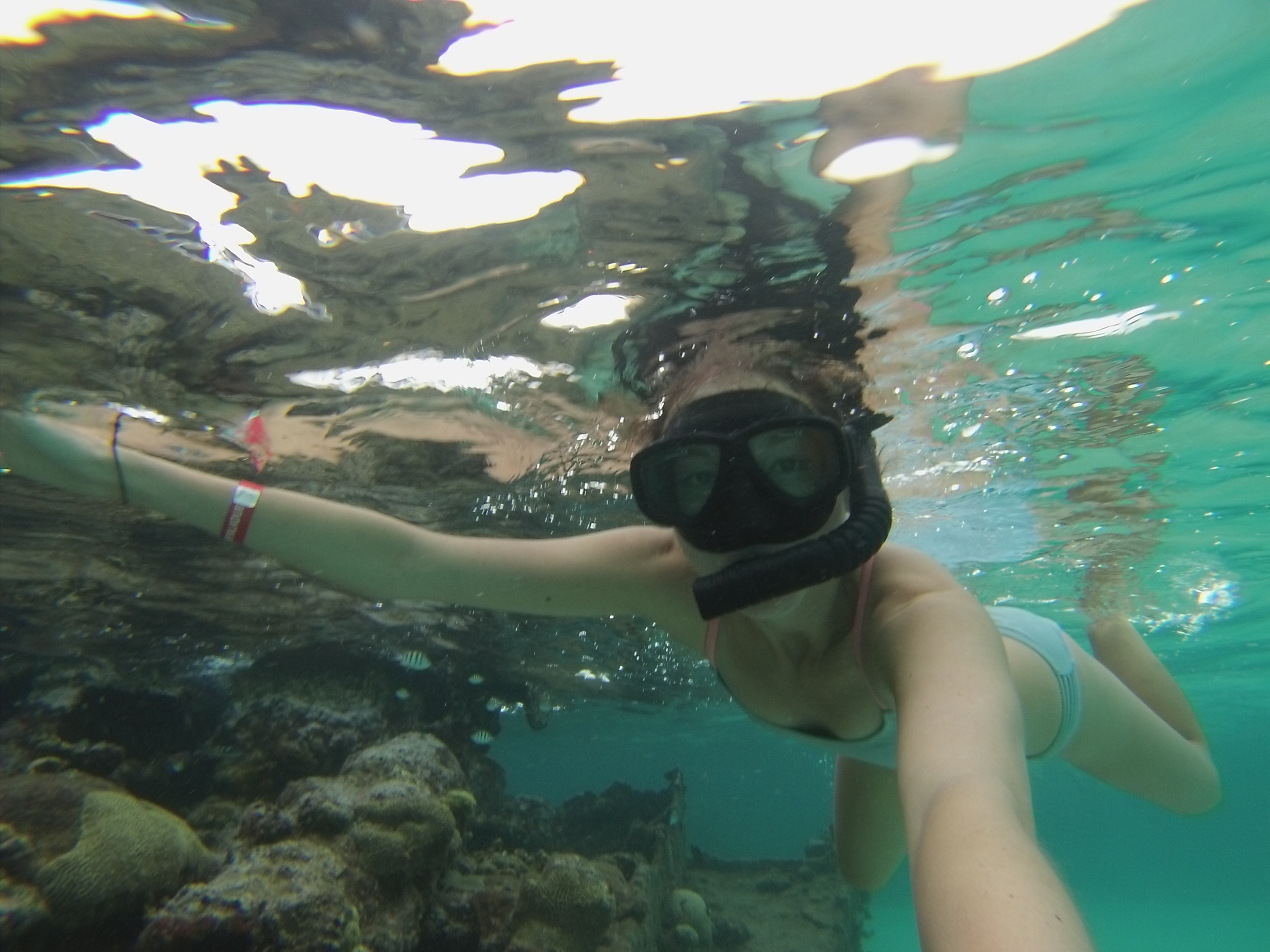 Snorkeling at Shipwreck Island.