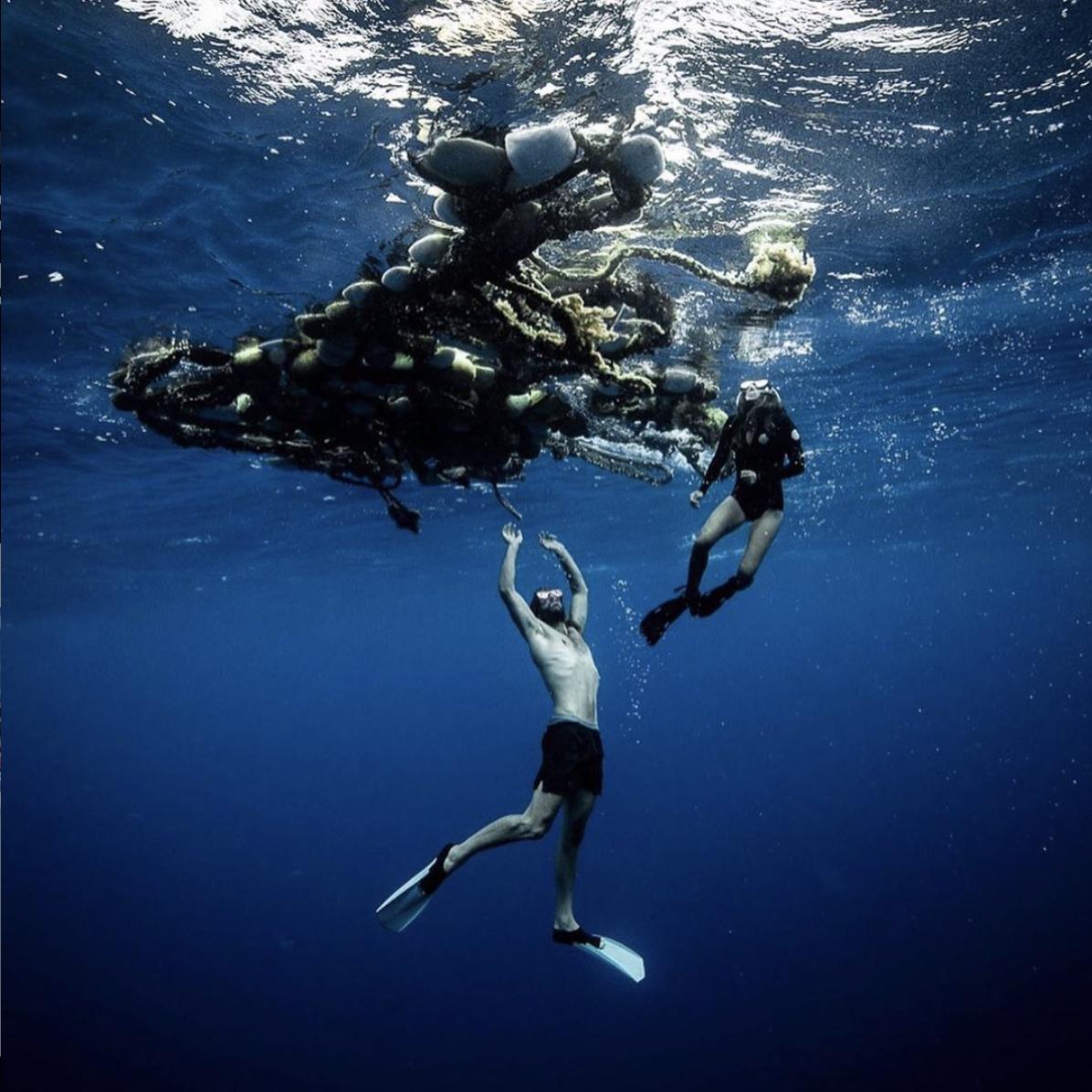 by The Vortex Swim/Josh Munoz