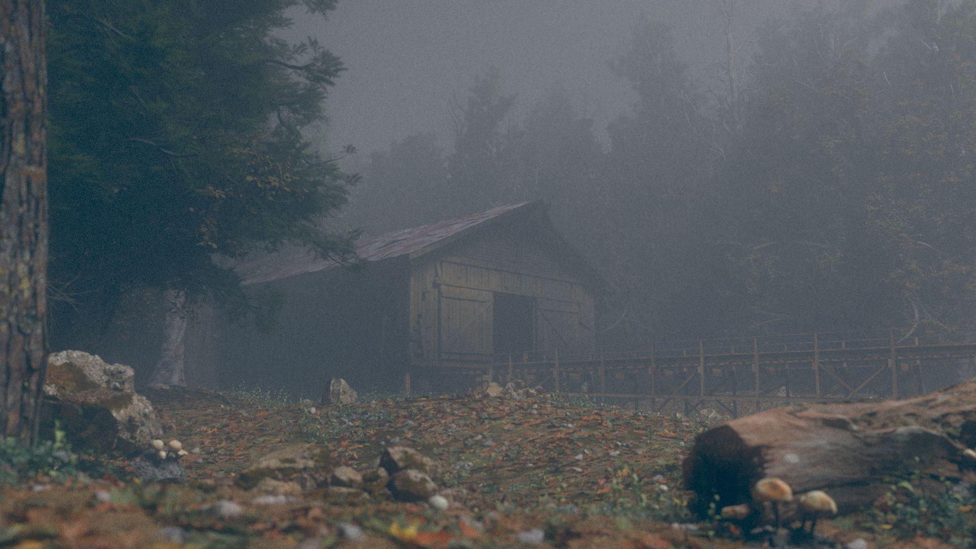 forestFloor_lookdev.jpg