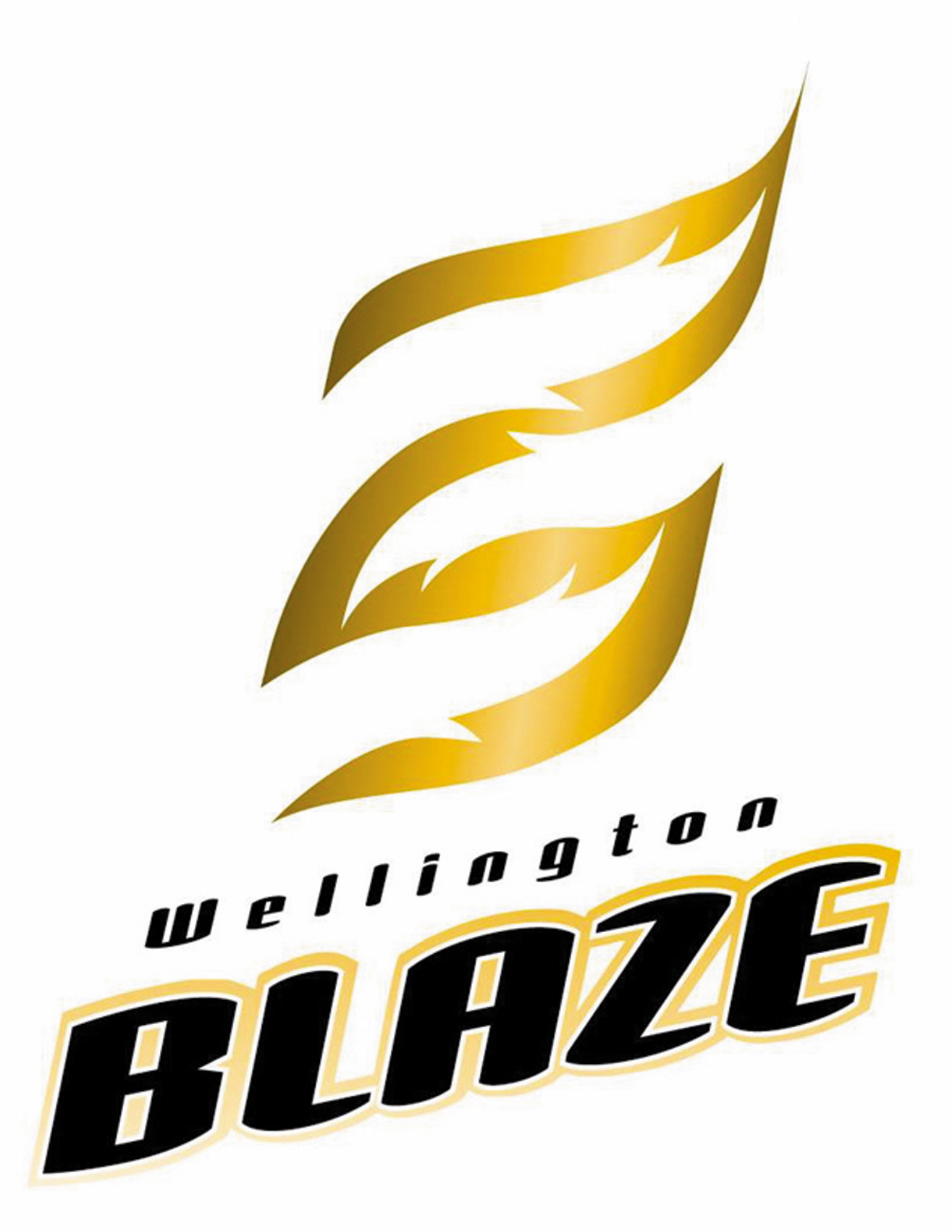 High Res Blaze Logo copy.jpg