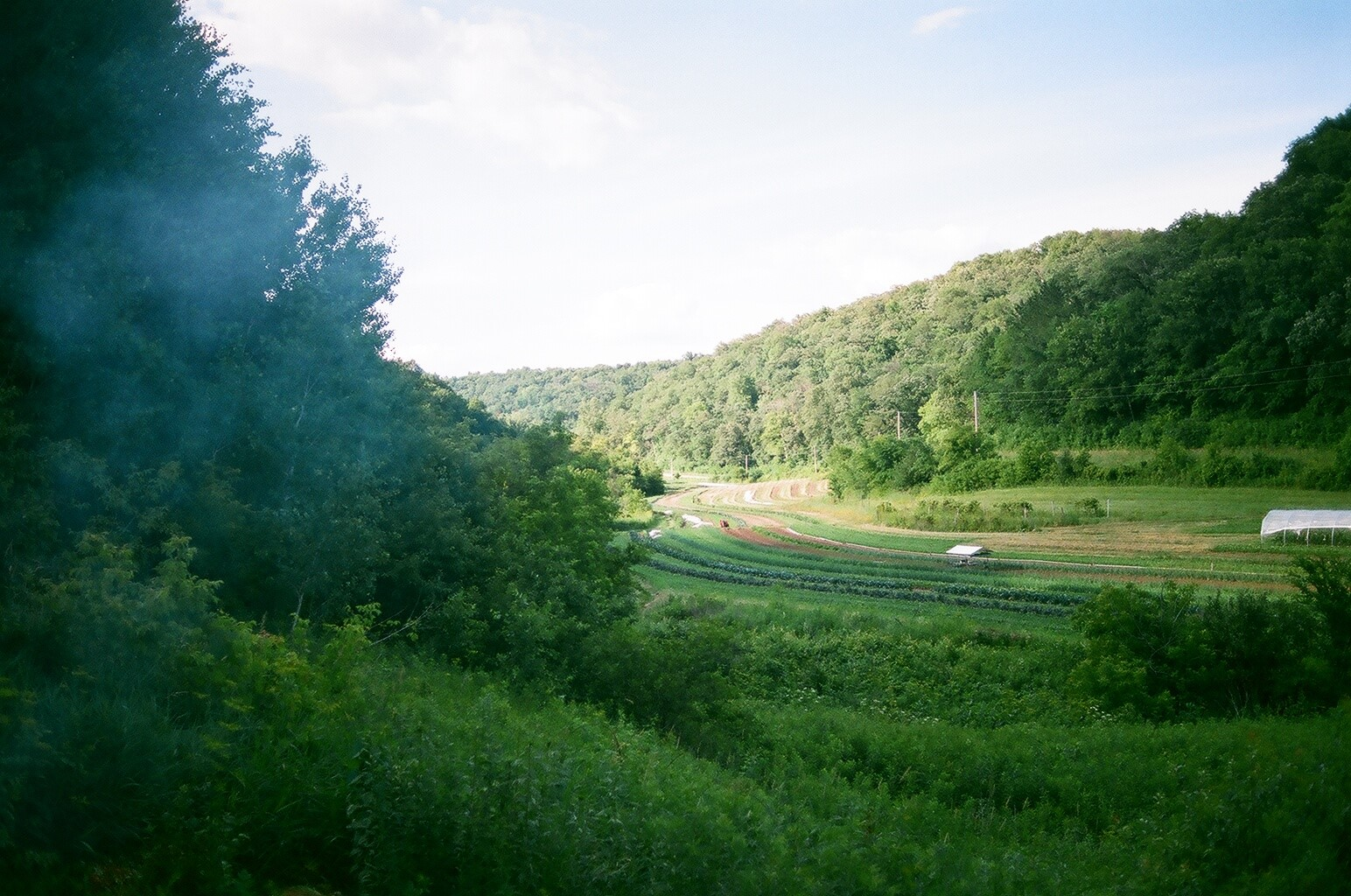 view from childhood home. Jones valley farm.
