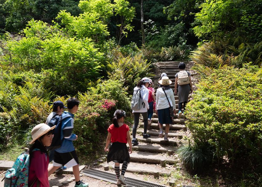 Acorn-Eikaiwa--8.jpg