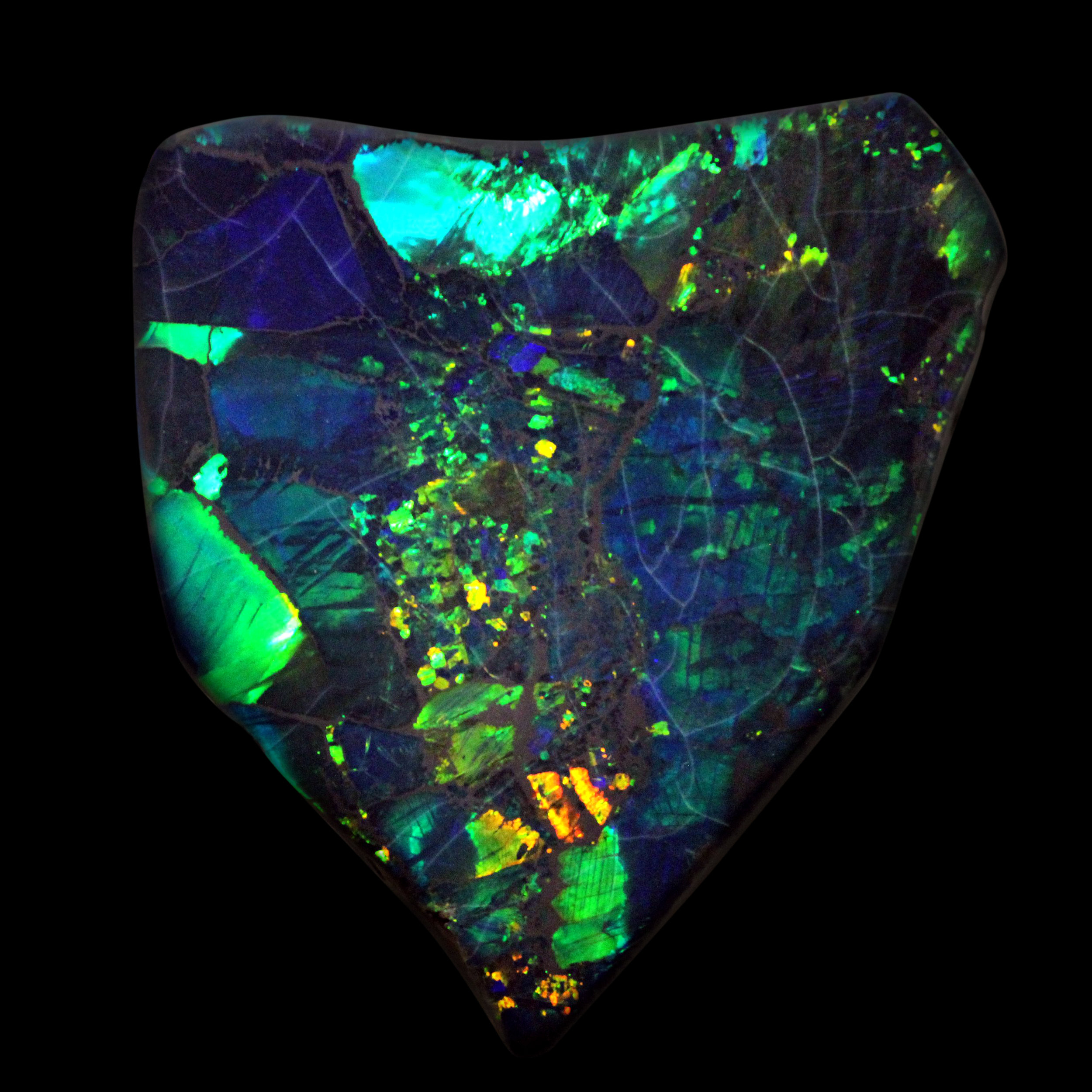 The Black Price Opal