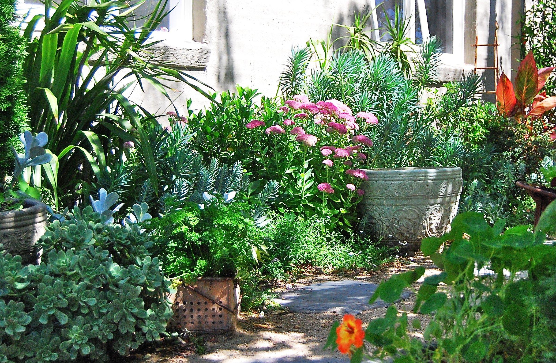 Spot for more favorite plants