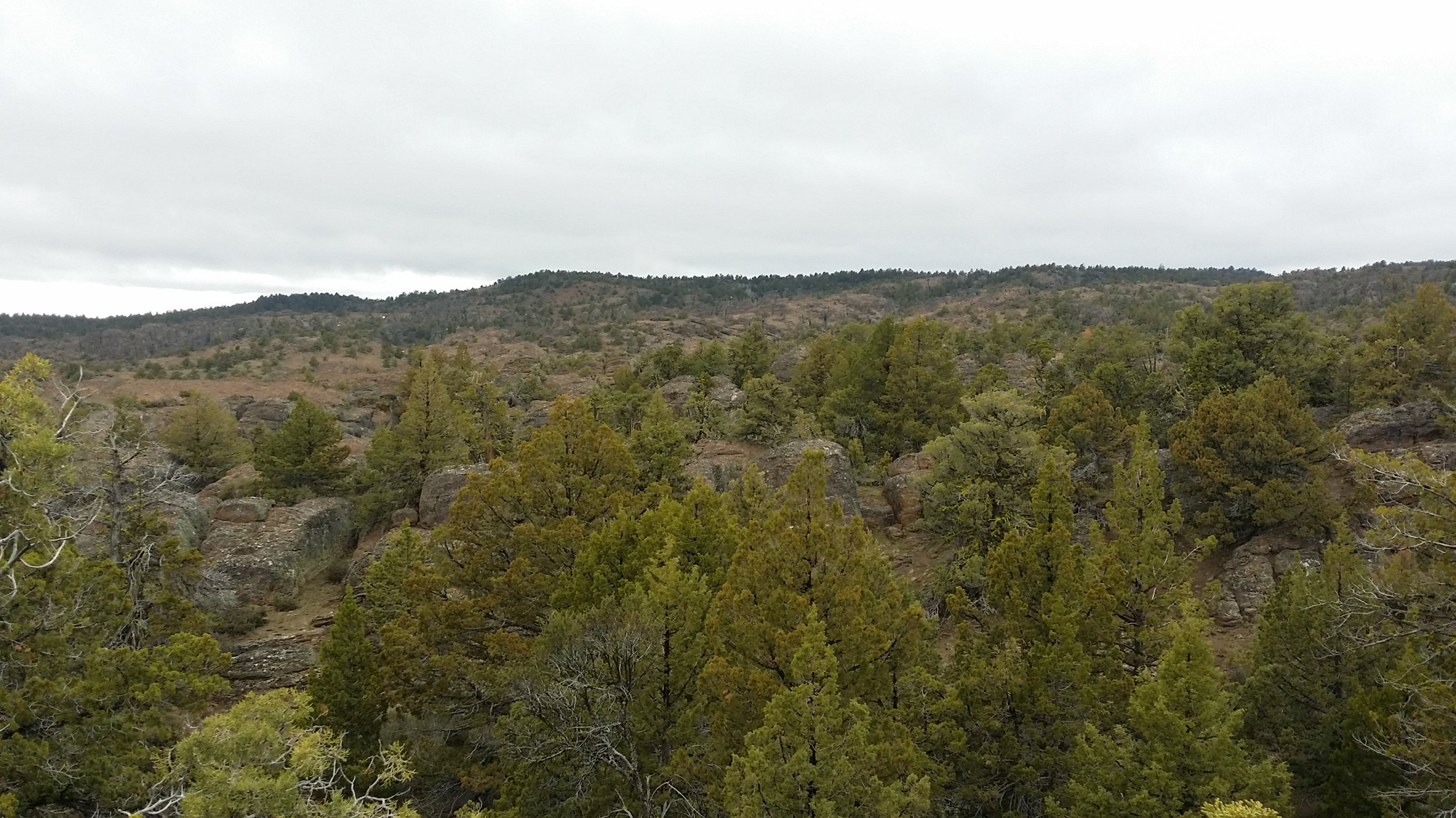 Looking north toward the wilderness highpoint.