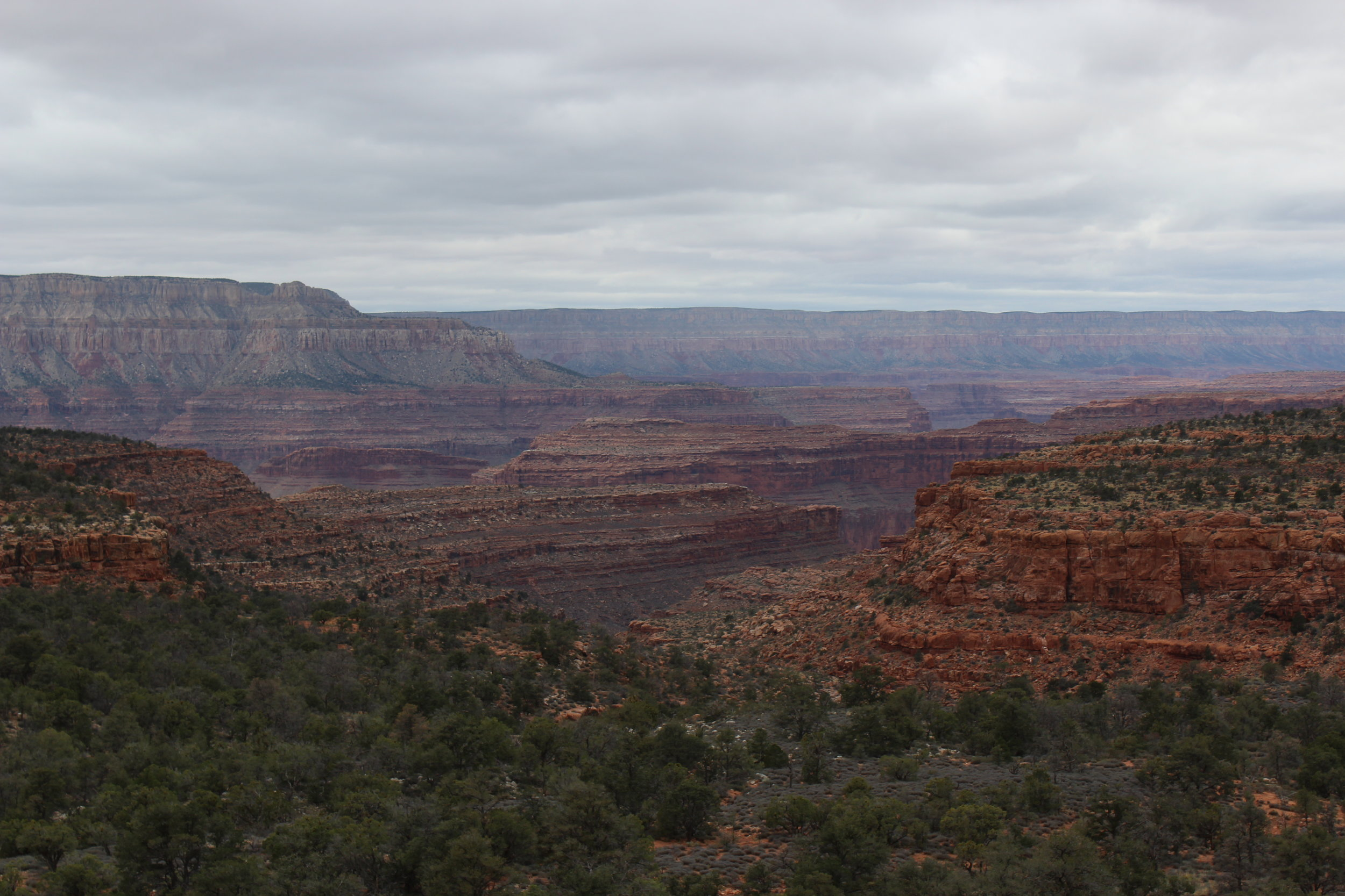 Looking back into the Canyon