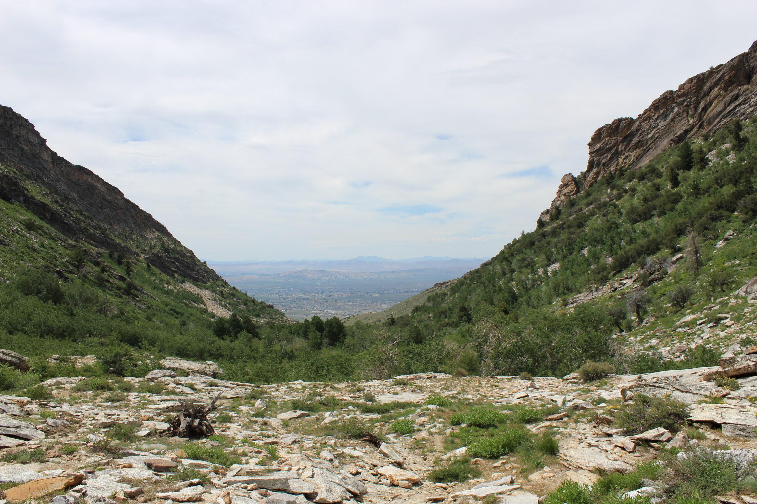 Looking down Hennen Canyon toward Elko.