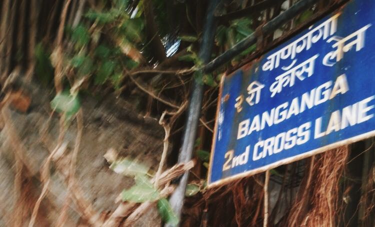 The sign, hidden under big banyans and their crowd of aerial roots.