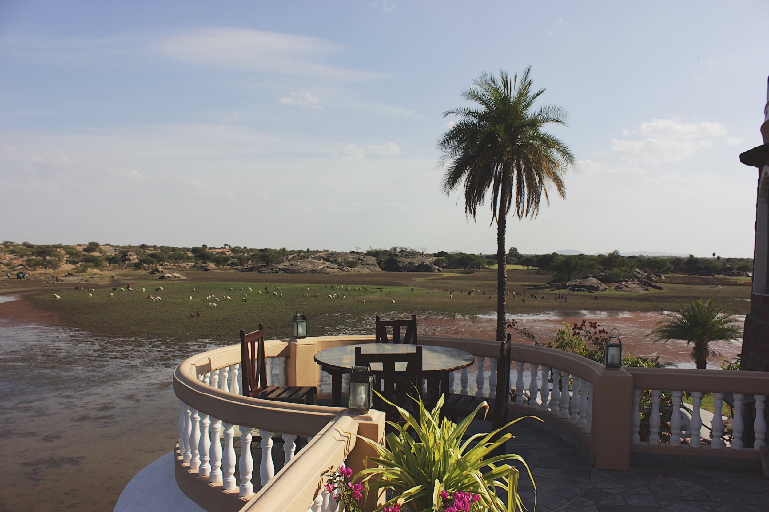 Seengh Sagar; now overlooking a parched lake.As you gaze far into the vast horizon, you'd soon realize what a peach of a spot the royalty picked to be their hunting retreat.