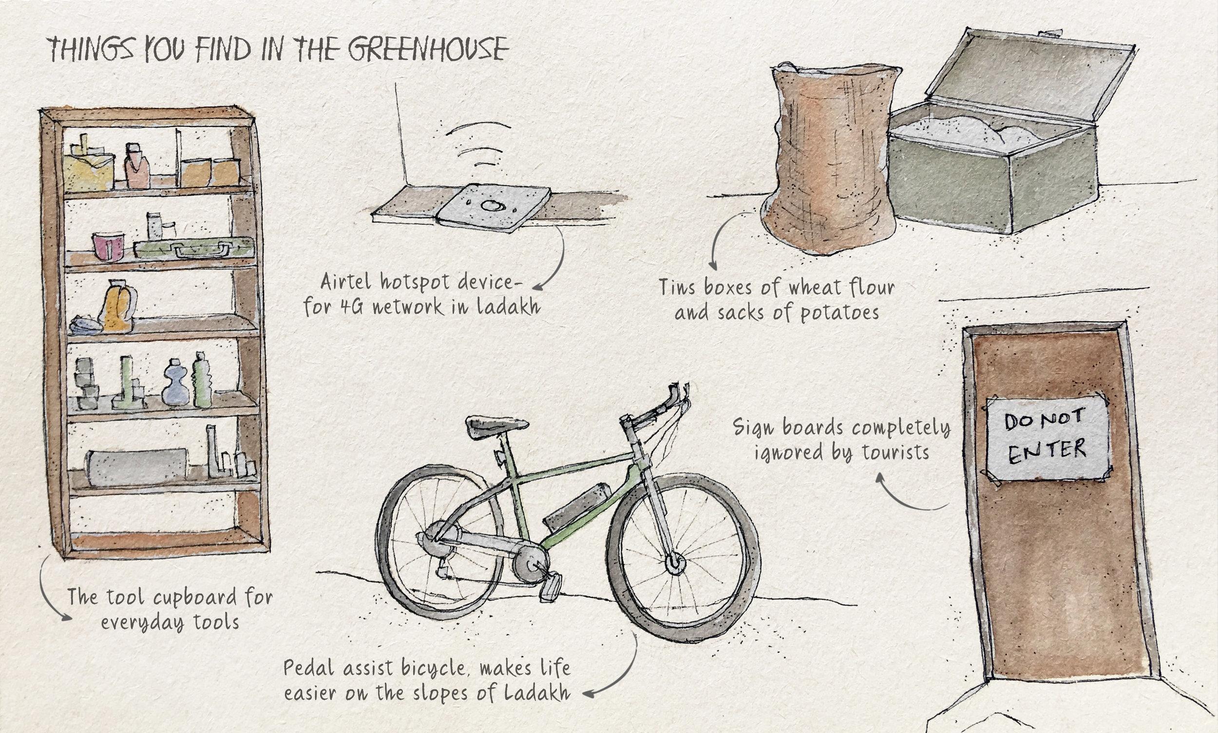 page8- greenhouse.jpg