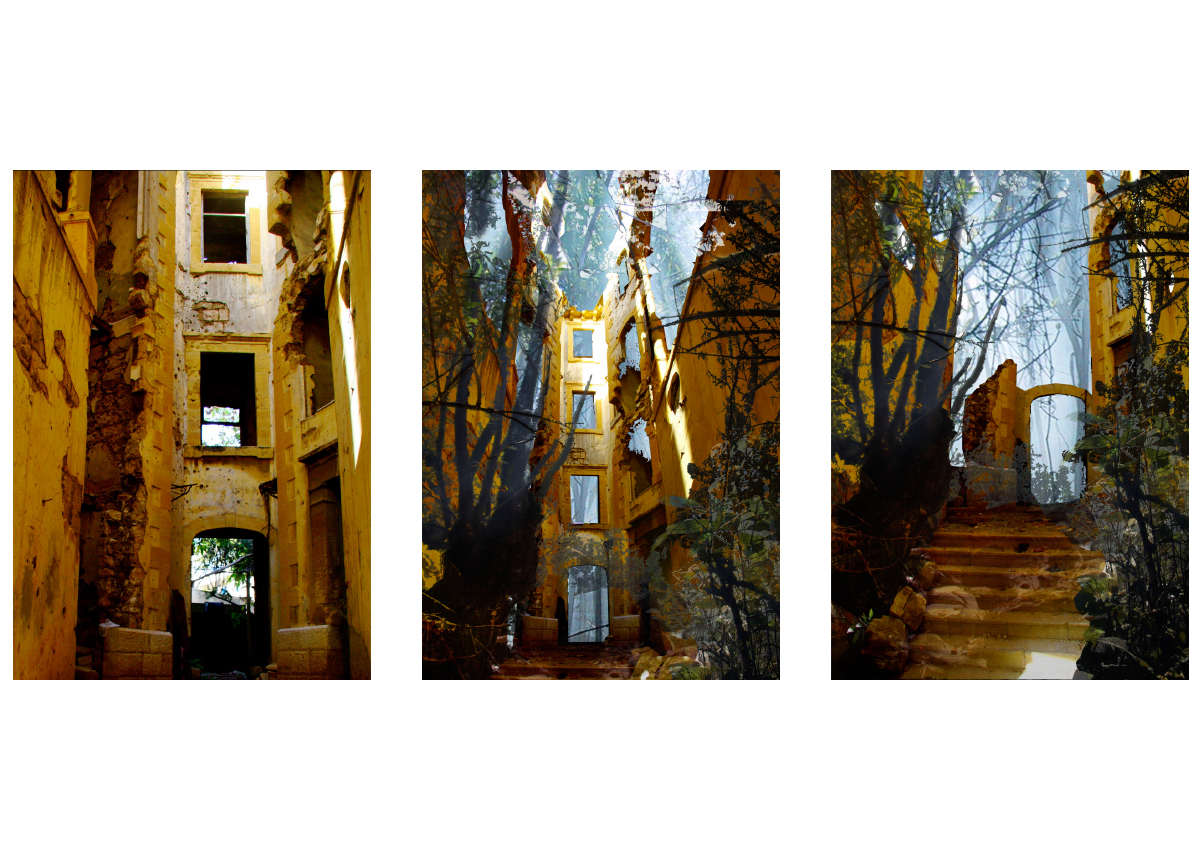 The thesis analyzes two popular scenarios in dealing with abandoned structures; the Ruin and the Monument, and concludes that neither is a desired future for the yellow building.