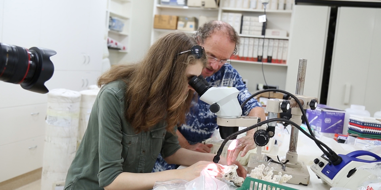Julia and Peter Harrison studying corals