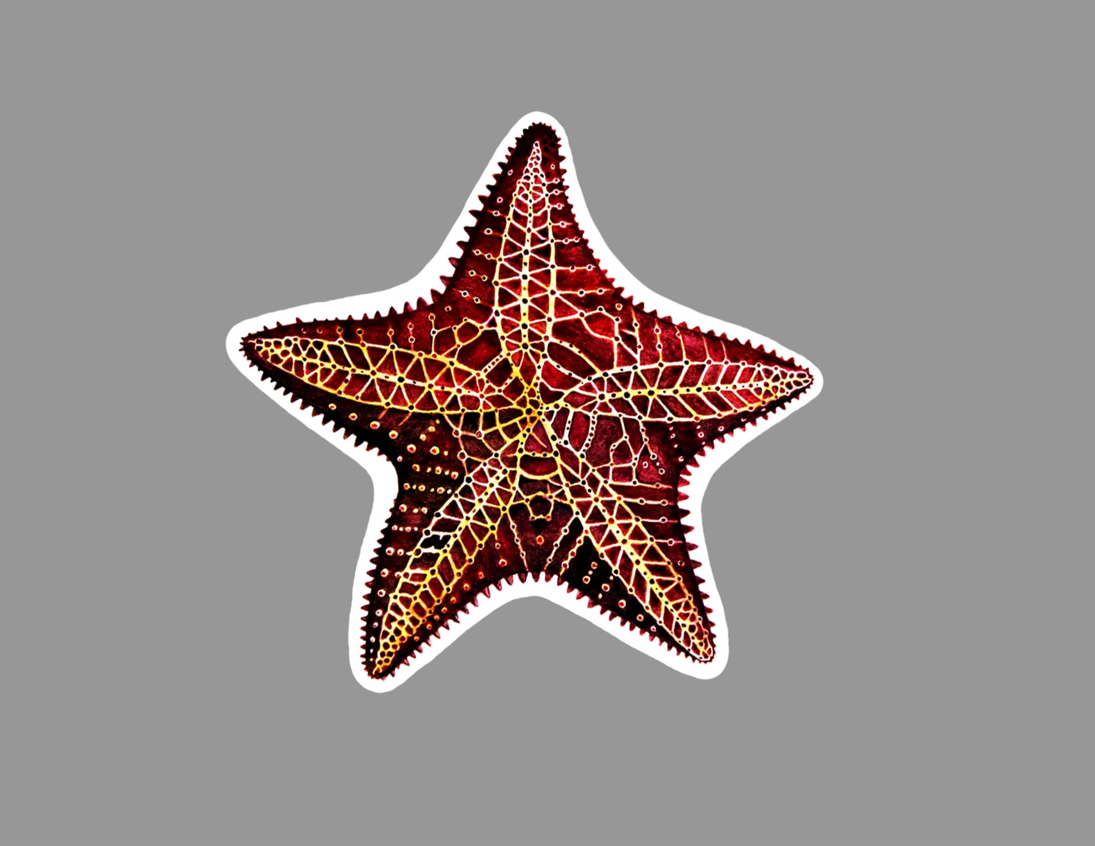 starfish sticker.jpg