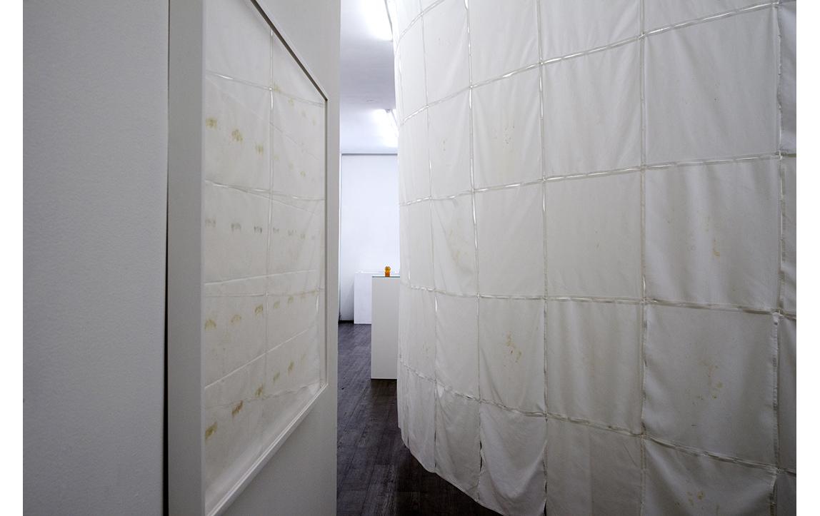 Feed,2014,installation view at envoy enterprises