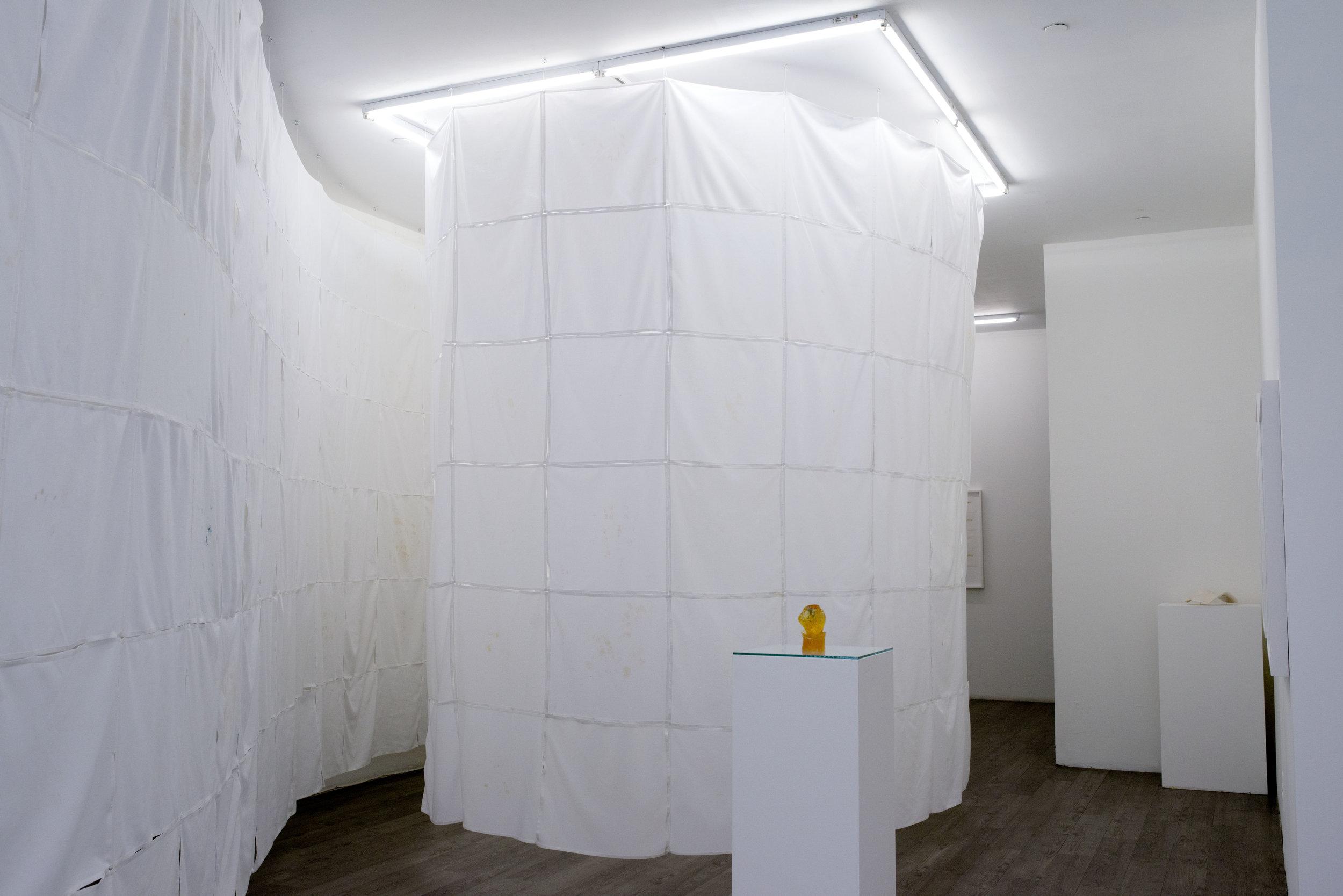 Feed  (2014), installation view at envoy enterprises