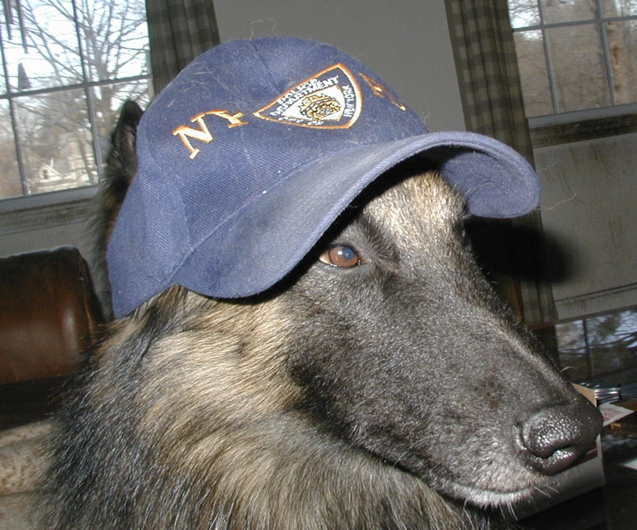 Flash in his NYPD hat