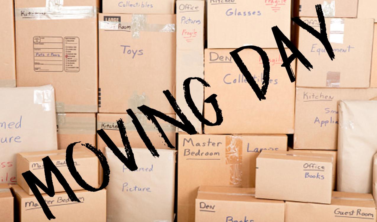 moving day resize.jpg