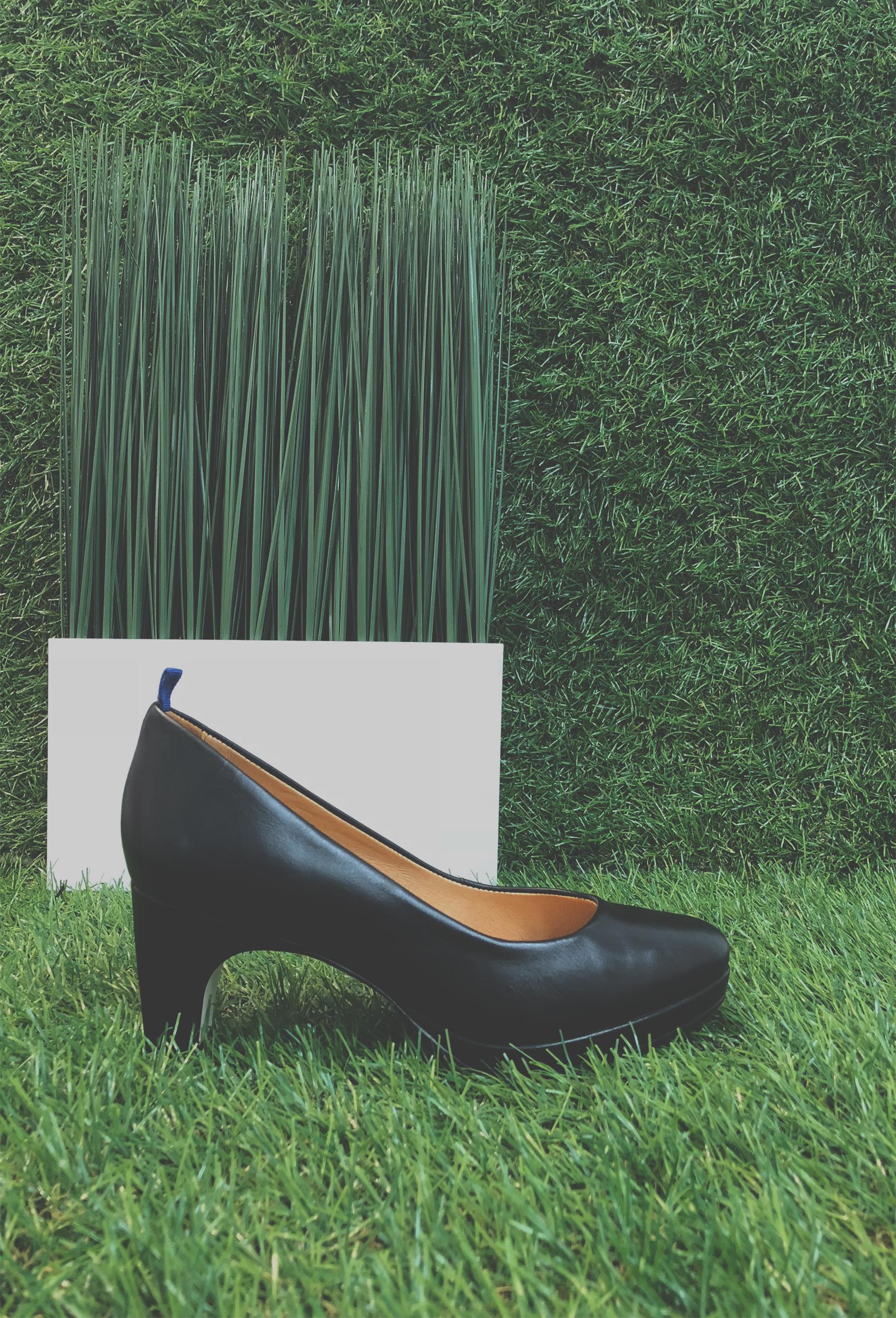 blackgrass.jpg