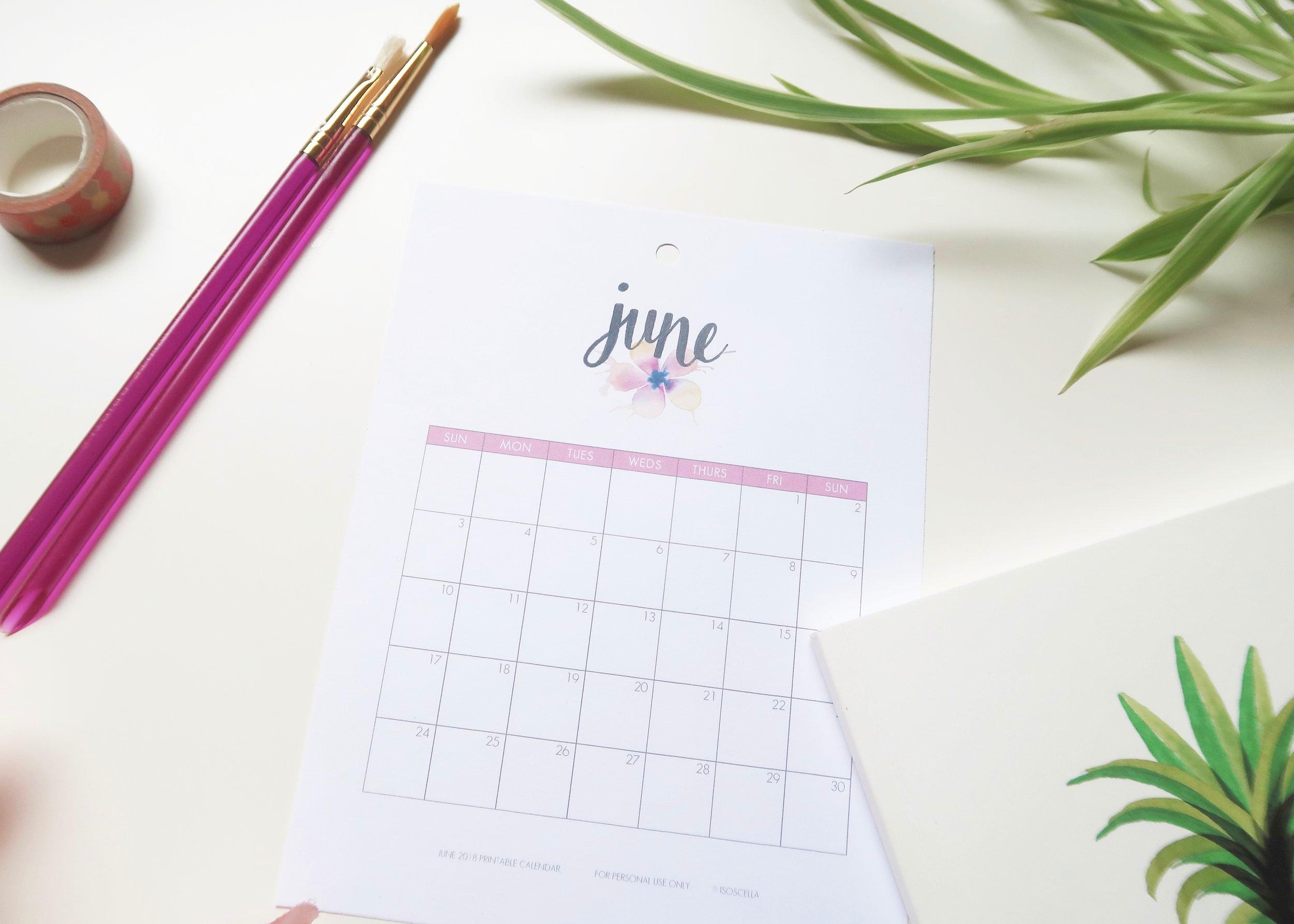 Printable 2019 Calendar by Isoscella