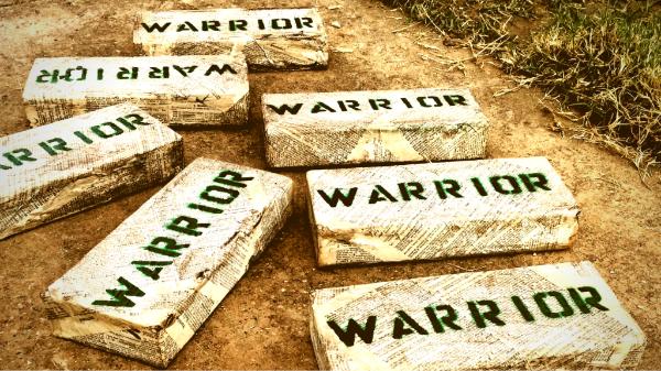 Warrior Brick.png