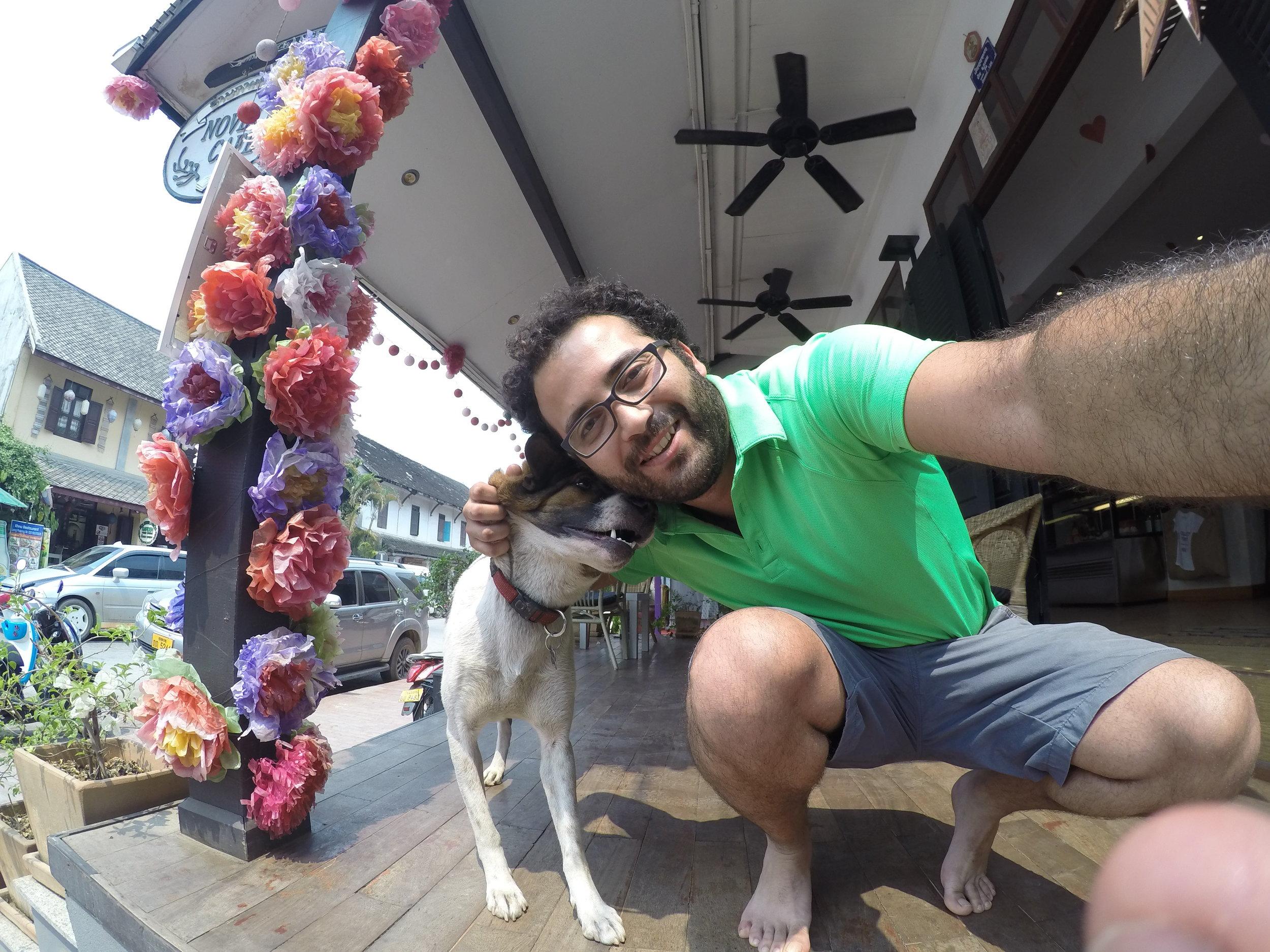 GoPro SE Asia 1st - Start to Lang Namtha 243_langprabang_dog.JPG