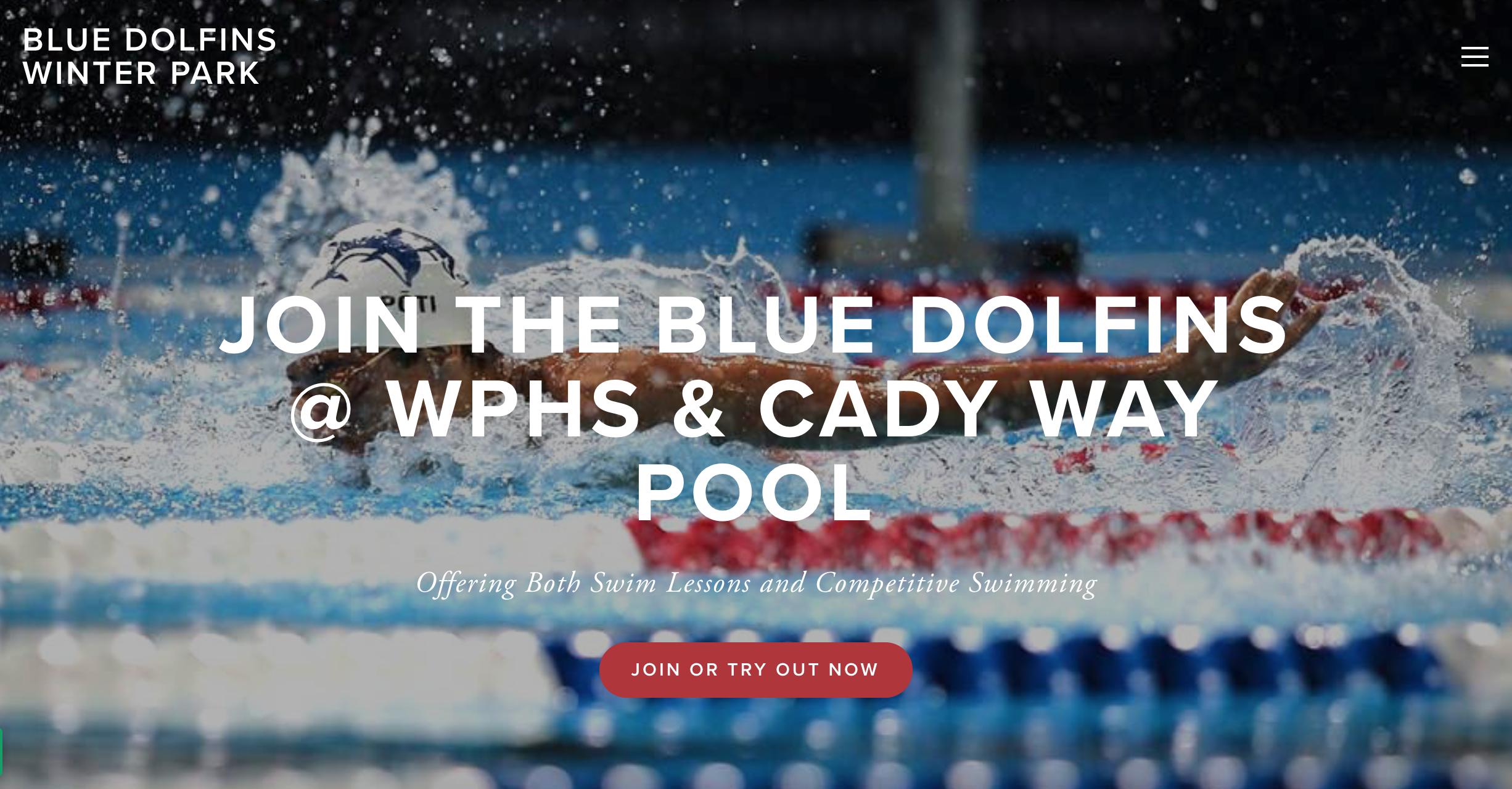 Blue Dolfins Website