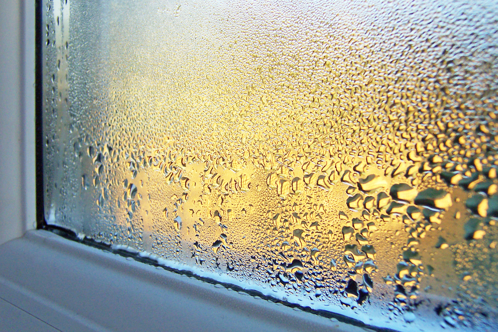 When Condensation Means You Need A Window Repair Brooklyn