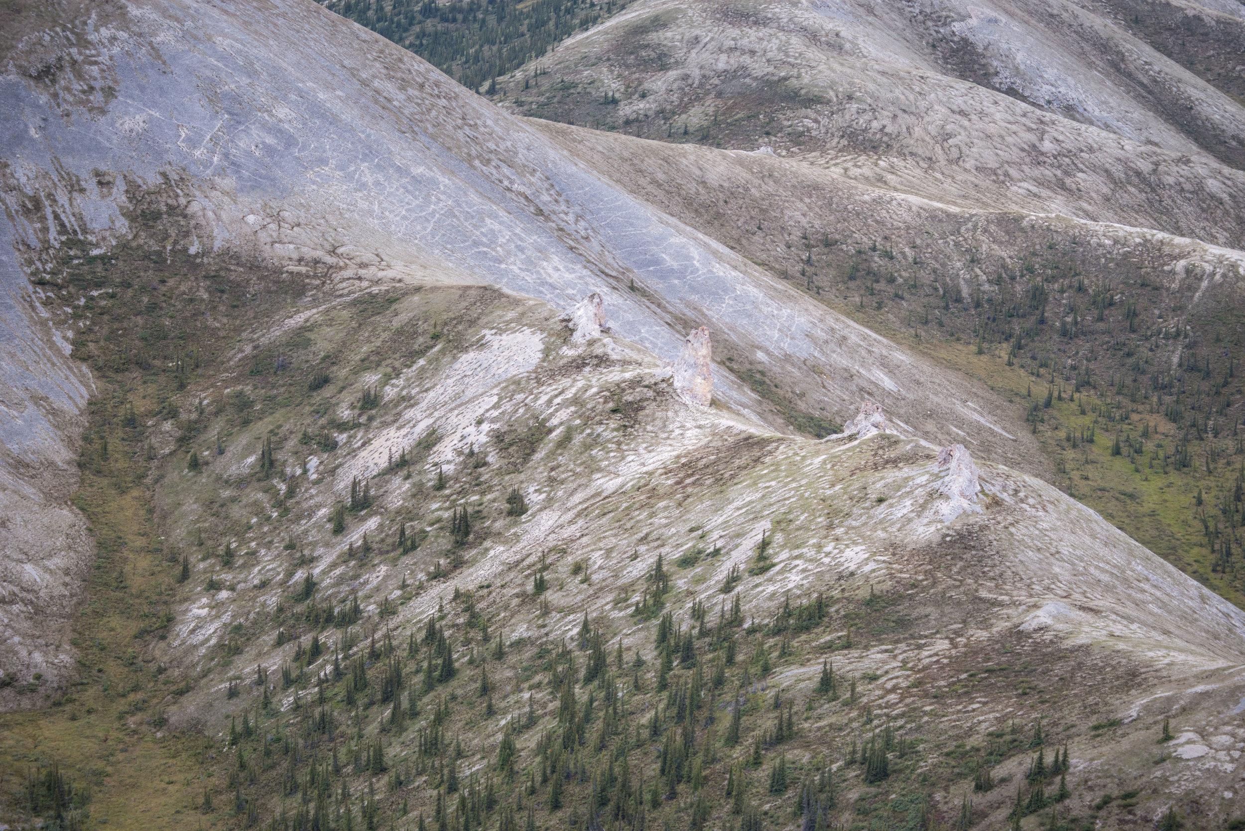 Limestone tors project above the ridgeline