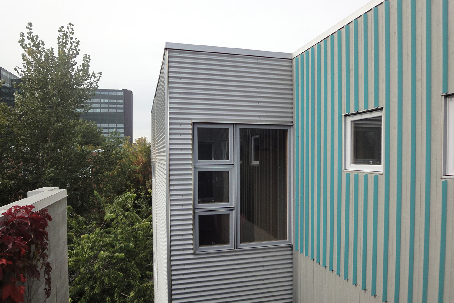 Exterior facade, gray wood siding. Board and batten modern. Turquoise blue painted sticks on one side