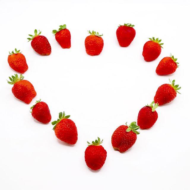 So Random 3 Things We Love About Canada: 1. Poutine 2. Beavertails 3. Ontario Strawberries  YUP. That's about right. Ontario Strawberries. Get On Them. #Strawberry #FragariaXananassa #GardenStrawberry #OntarioStrawberries #BerryLife #YummyInMyTummy #ProduceLife