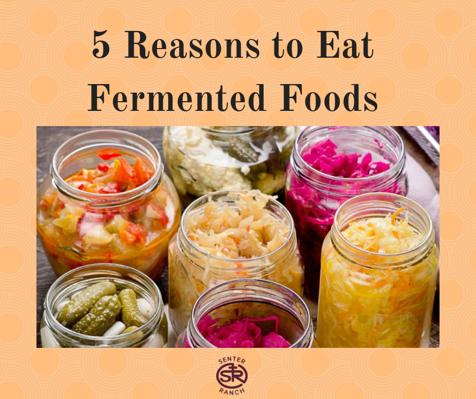 5 Reasons to Eat Fermented Foods.png