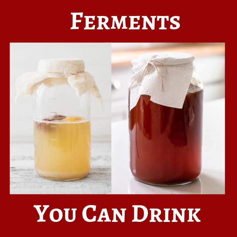 Ferments You Can Drink.png
